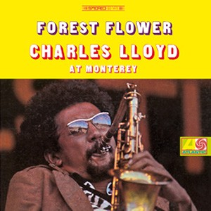 Charles Lloyd Forest Flower At Monterey.jpg