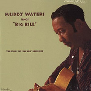 Muddy Waters Muddy Waters Sings Big Bill Broonzy 180g LP.jpg